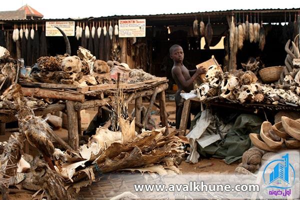 بازار جادوگری؛ توگو؛ آفریقا