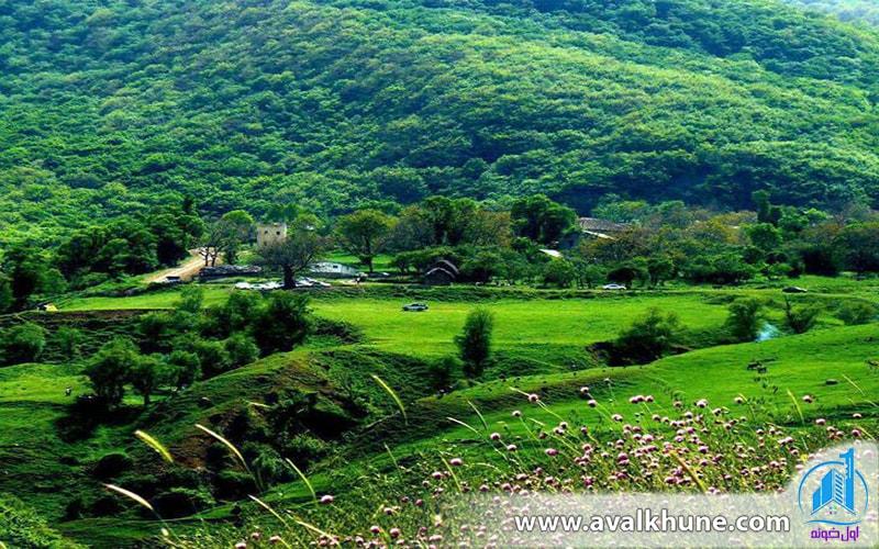 طرح هادی روستا